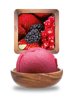 fruitsrouges_sorbet.png