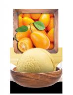 kumquat_sorbet.png